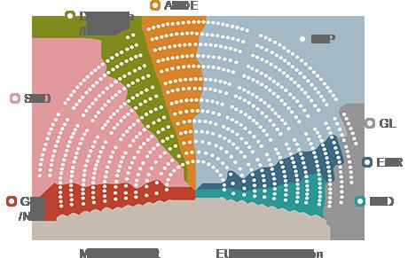 partigrupper_EU