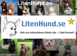 LitenHund.se